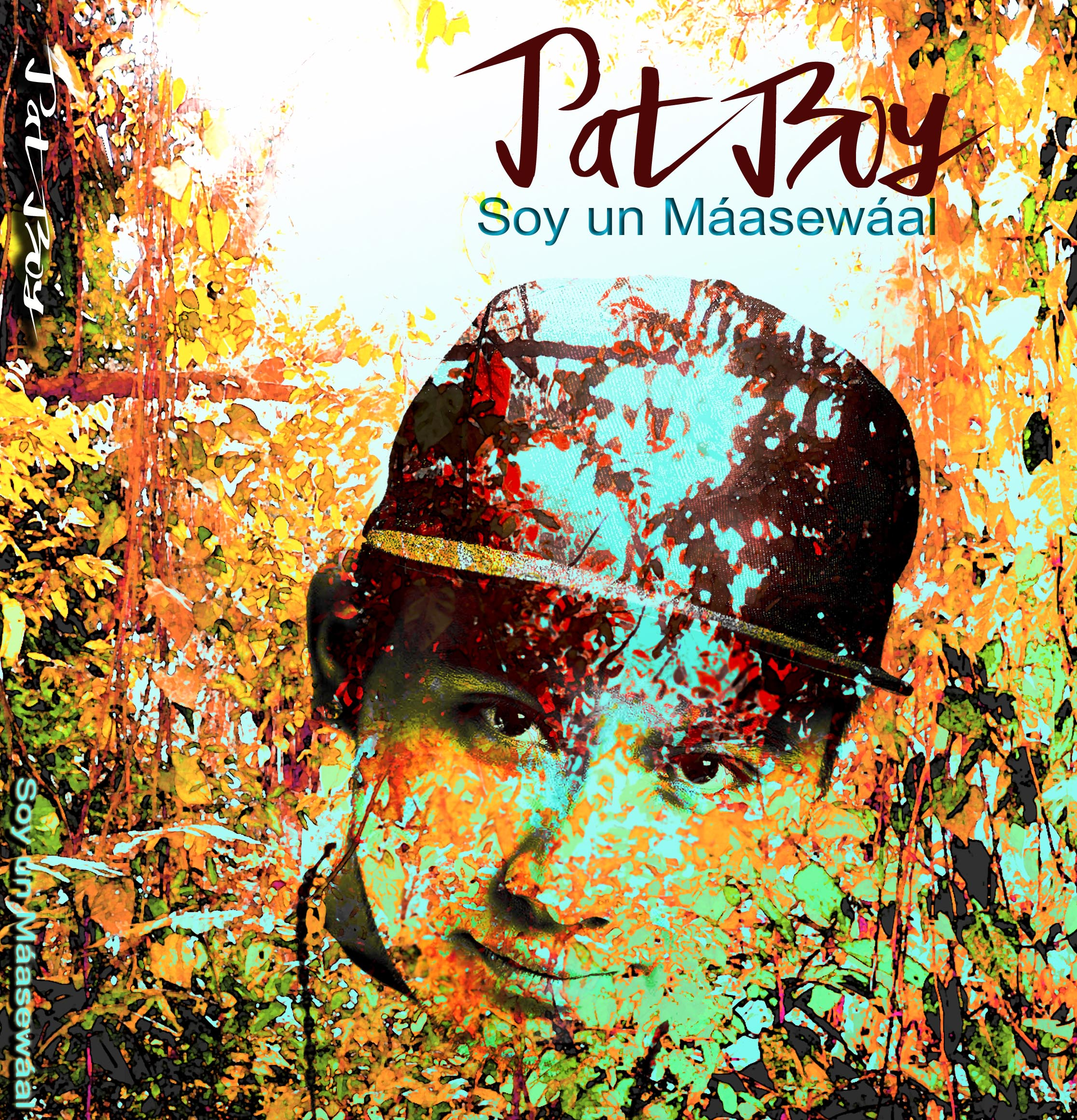Portada Disco Pat Boy(1)